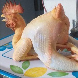 thịt gà chạy bộ sạch 1
