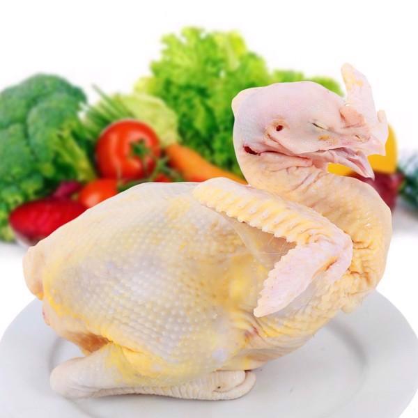 Hệ thống siêu thị, cửa hàng thực phẩm là những địa chỉ uy tín cung cấp gà ri thuần chủng.